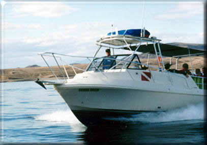 Scuba Diving Lake Mead by shore or boat information